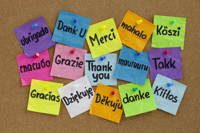 bigstock-Thank-You-In-Different-Languag-8130866-1